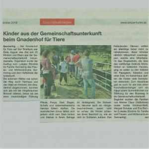 Amper Kurier 15.9.18 (004)